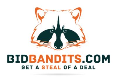 Bid Bandits-01