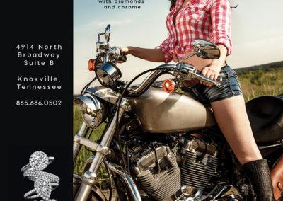 March 2017 Southern Biker